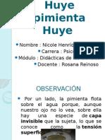 Huye-pimienta-Huye.pptx