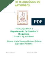 EXPOSICON AL PLOMO.docx