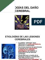 ETIOLOGIAS_DEL_DANO_CEREBRAL.ppt