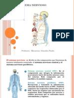 9 Sistema Nervioso2 (1)