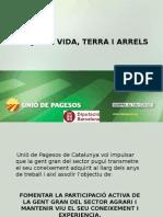 projecte Vida terra Arrels.ppt