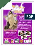 El Amor de Jesús y de Otros Santos Por Los Animales.