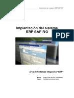 Implantación Del Sistema ERP-SAP