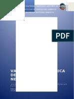 VALORIZACION_PASTORURI