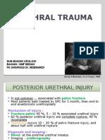 Trauma Urethra