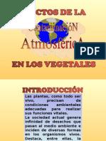 Efectos de La Contaminación Atmosférica Sobre Los Vegetales