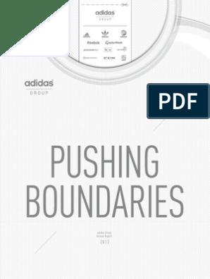 gb_2012_en   Adidas   Dividend