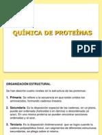 17-Proteinas1_27347