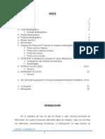 informemetalografia 2