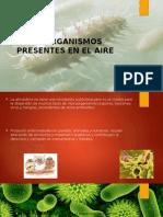 Microorganismos Presentes en El Aire.