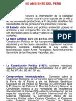 02-MEDIO AMBIENTE PERUANOagua.pdf