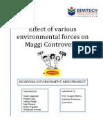 Maggi Mini Project