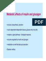 insulin-glukagon.pdf