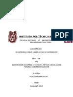 Instituto Politècnico Nacional