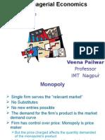 Monopoly Market Structure (1)