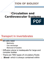 Circulation & Cardiovascular System