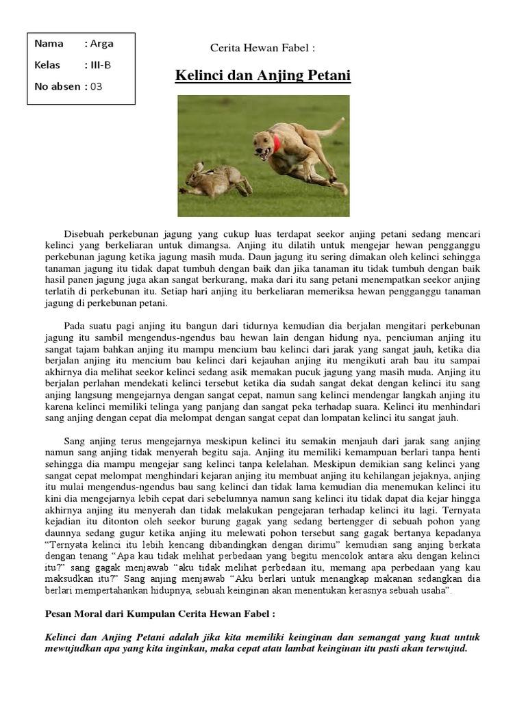 Kelinci Dan Anjing Petani Cerita Hewan Fabel Tugas Kelas 3 Sd