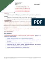 Contenido_07- OCLUSIONNNN