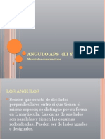 Angulo Aps (Li y Ld) Ricardo CallejAS AYALA