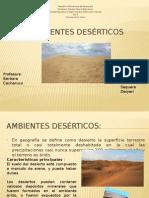Ambientes desérticos