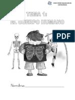 El Cuerpo humano