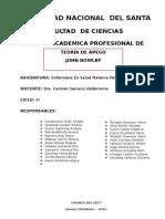 TEORIA-DEL-APEGO-INFORME-FINAL.docx