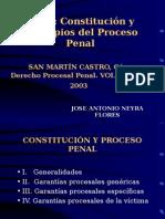 Constitucion y Principios Del Proceso Penal