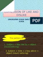 Expression of Like and Dislike (1)