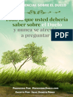 eBook Manejodelduelo v Web