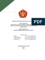 Mulyati Universitastadulako Pkmm.pdf