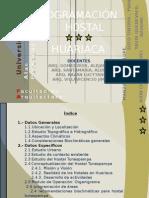 Progracion Huariaca -Grupo Sayayin2010