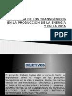 Transgenicos Trabajo Final