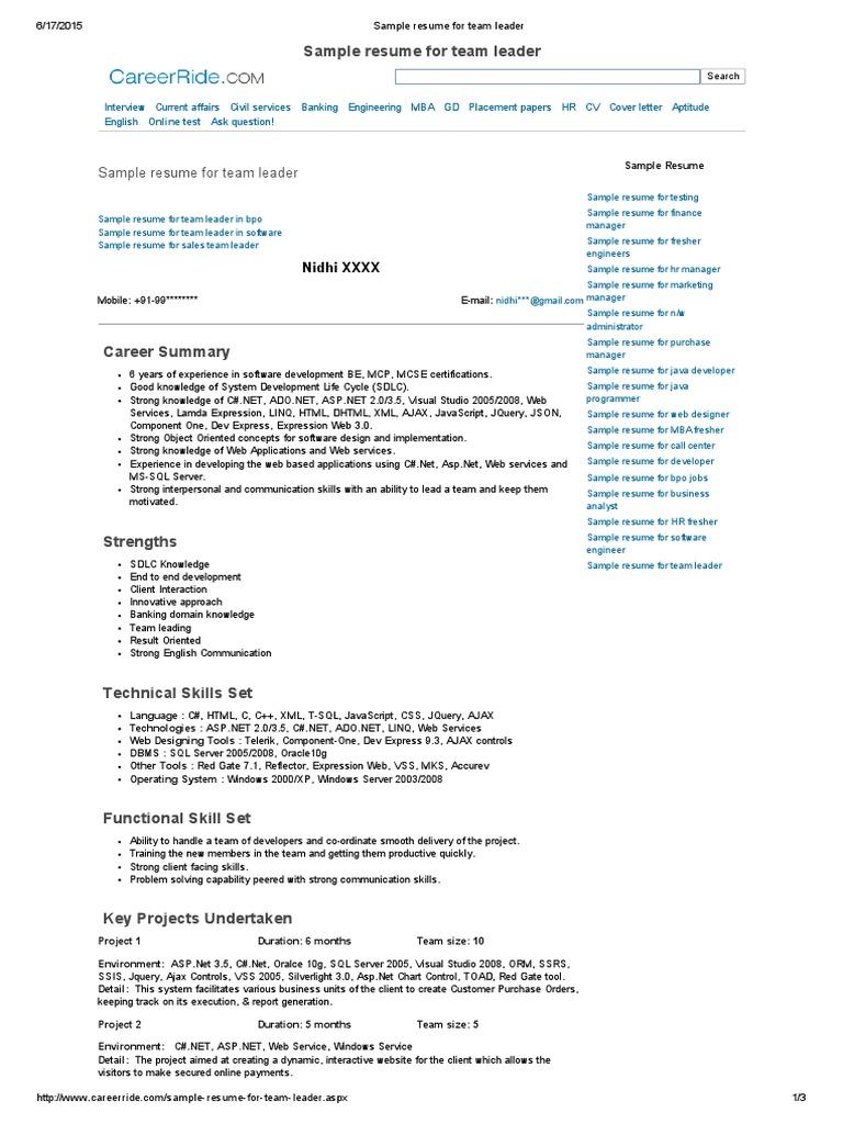 Sample Resume for Team Leader | Ajax (Programming) | Résumé