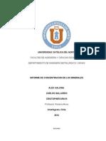 Concentracion de Mimerales Informe Final Asdq3wdafaA44444444444444444444444444444444wef(1)