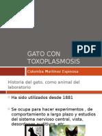 El gato en el estudio de la Toxoplasmosis