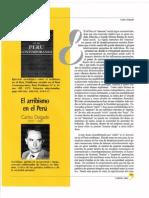plan lector semana 13 LENGUA 2.pdf