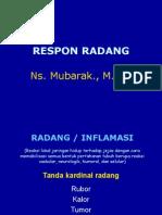 01. Respon Radang