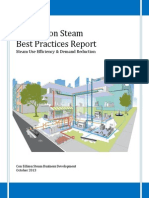 Steam-Best-Practices-Report.pdf