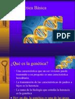 Genetica Basica