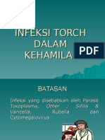 Infeksi Torch