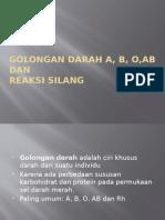 GOLONGAN DARAH A, B, O DAN.pptx
