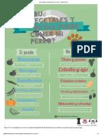 ¿Qué Vegetales y Frutas Puede Comer Mi Perro_ - Razas de Perros