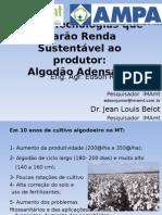 bienal_2009_edson_ricardo.ppt