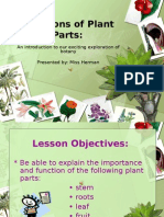 Functions of Plant Parts054