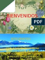 Proyecto Abono Organico