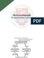 Electrocardiography Bradyarrhythmias and blocks