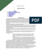 Geologia Estructural - Dibujo Estructural [Spanish].doc