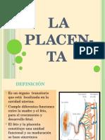 Diapositivasdeplacenta 101209084653 Phpapp02 (1)