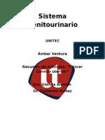 cancer cervic uterino.doc