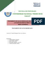 Tratamiento de Aguas Residuales Industrialesde Planta Nestle SA